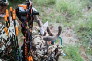 5 Tips for Your First Early Season AZ Archery Deer Hunt