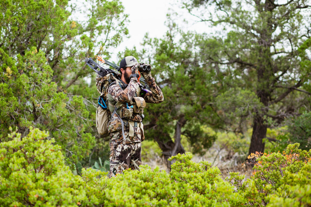 Using Optics to scan country for bear hunting in Arizona