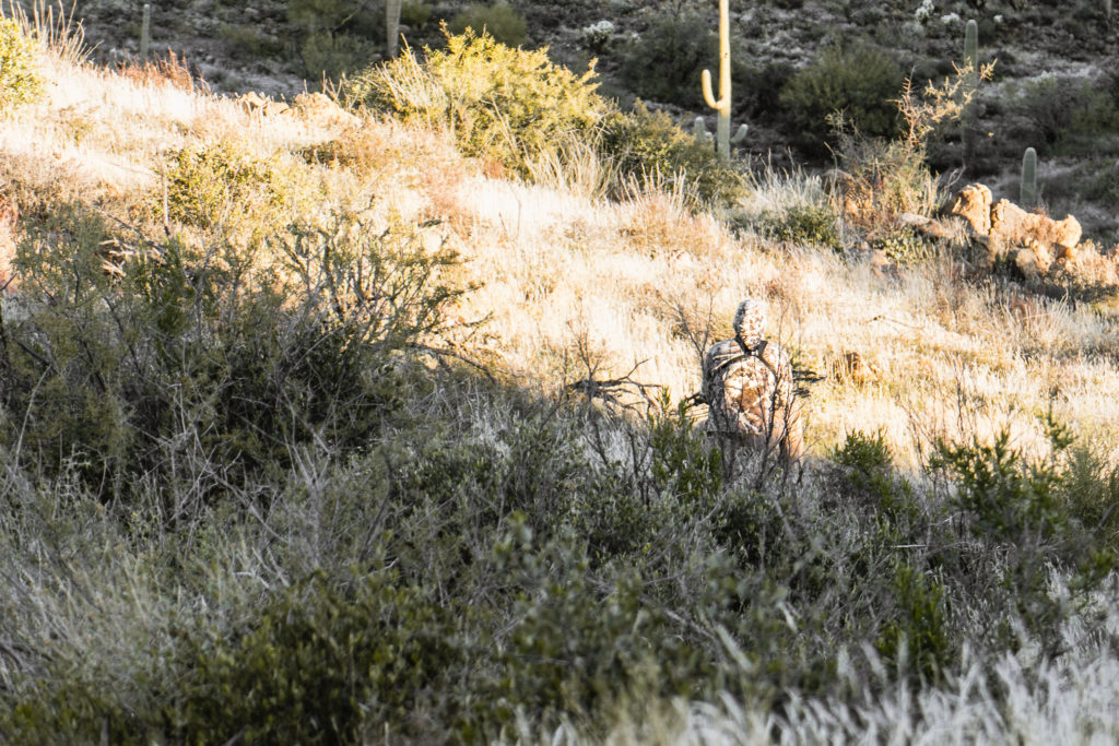 A bowhunter stalking into a herd of mule deer with his first bow bought the year before