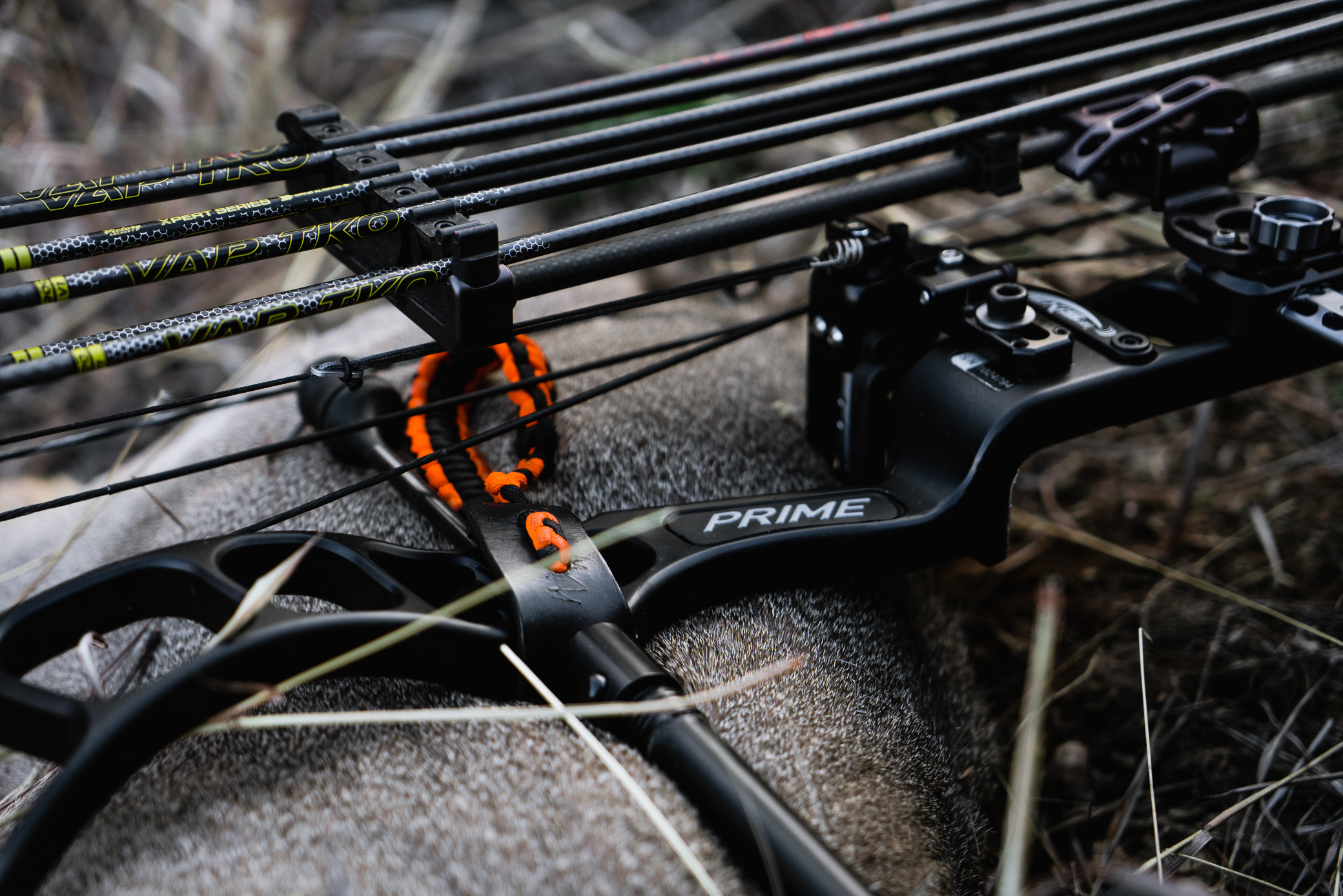When Should You Change Your Bow String?  Now or Later?