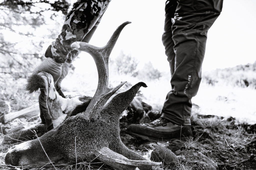 Josh Kirchner from Dialed in Hunter processing a coues deer buck in the field